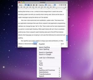 Snow Leopard: Will Mac users want to purr or hiss over the big cat