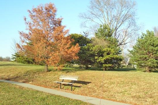 MacLennan Park, located near S.W. 6th and Fairlawn near Cedar Crest, offers bike trails three mountain bike trails are 1.8, 1.4 and 0.7 miles in length and wind through terrain ranging from heavily wooded to grassland.