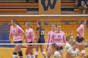 Lady Blues volleyball falls short of high expectations
