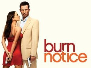 Burn Notice - Netflix Review
