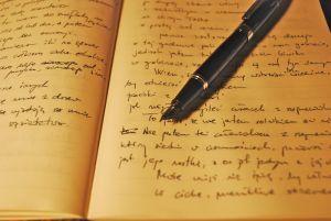 """""""Write"""" on with NaNoWriMo"""