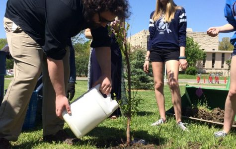 Tree planting dedicated to survivors of sexual assault and domestic violence