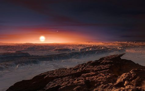 Proxima Centauri, along with the more distant Alpha Centauri A and B, is seen low on the horizon of the newly discovered planet in this artist's illustration. Proxima b has a similar mass as Earth and orbits inside the habitable zone of the red dwarf star. As such, it's year is only 11.2 days. Additionally, the planet it is likely tidally locked to the star, making the prospect of life on the rocky world difficult.