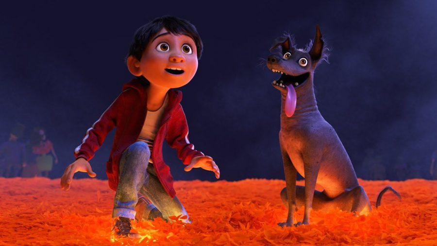 Boy's best friend: Miguel is constantly trailed by Dante, a stray Xoloitzcuintle, better known as the Mexican Hairless Dog. Xolo's often appear in the work of Frida Kahlo, who also appears in