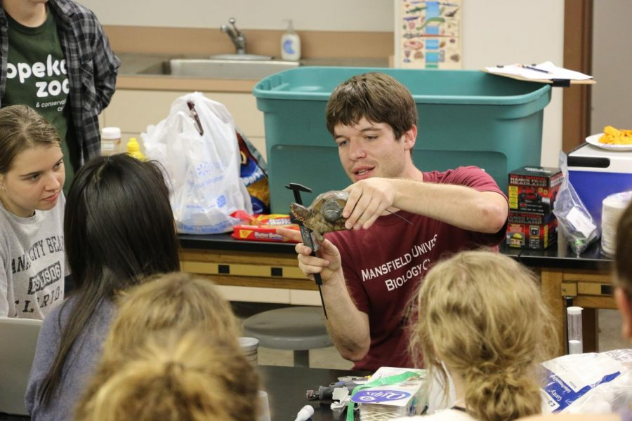 Learning: Reed teaches students how to measure. His research has led to the survival of more turtles.
