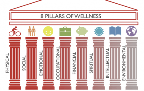 Pillars of wellness: These eight pillars represent areas in which individuals can seek out wellness in their lives. Washburn University provides resources to help with each.