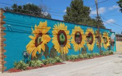 This local mural is located in the NOTO Art District in Topeka, KS. It was created by award winning artist Jennifer Bohlander, who wanted to share the Kansas State sunflower with the community.