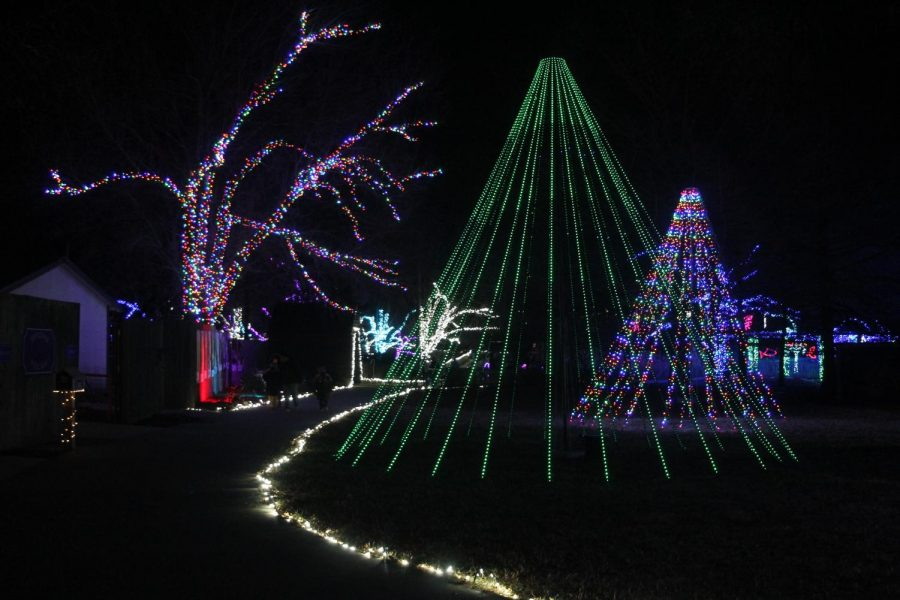 Light the way: The winding paths through the zoo are adorned with all manner of decorative lights. They ensure that guests don
