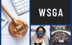 WSGA candidates share visions for office