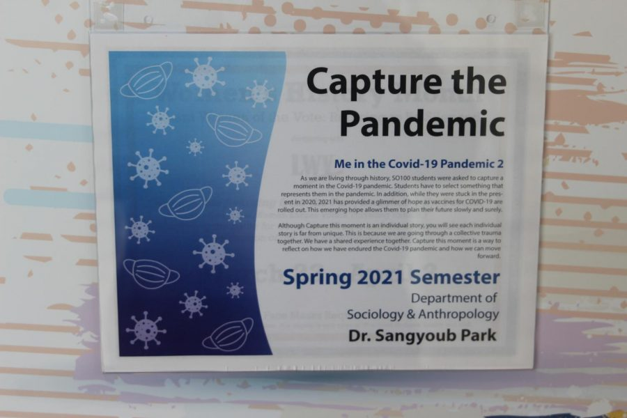 "Picture perfect: Art for Thought displays ""Capture the Pandemic: Me in the Covid-19 Pandemic 2"" in the Memorial Union. It features SO-100 students"