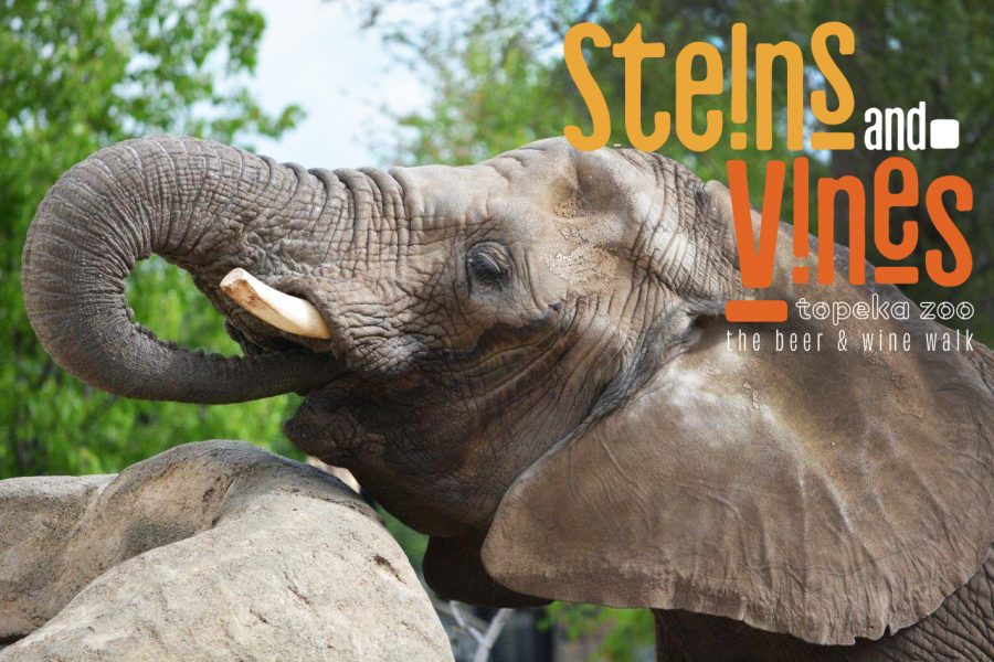 Alcohol and animals: Steins and Vines is a great way to support the Topeka Zoo while also having a fun evening. Visit the Zoo's website to find out how this event will benefit other Zoo programs.