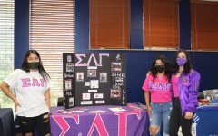 Pink and Purple: Sigma Lambda Gamma is seen with a great display. Their vivid colors caught the attention of all who attended the event.