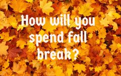 Bods on the Block: How will you spend your fall break