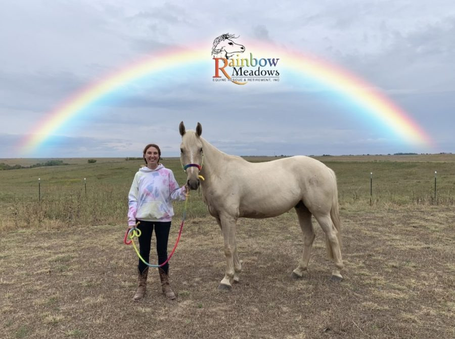 Jordan Noller adopts a horse, Teagan,  from Rainbow Meadows. Teagan was brought to Rainbow Meadows in 2017 where eh has grown to be a gentle giant.